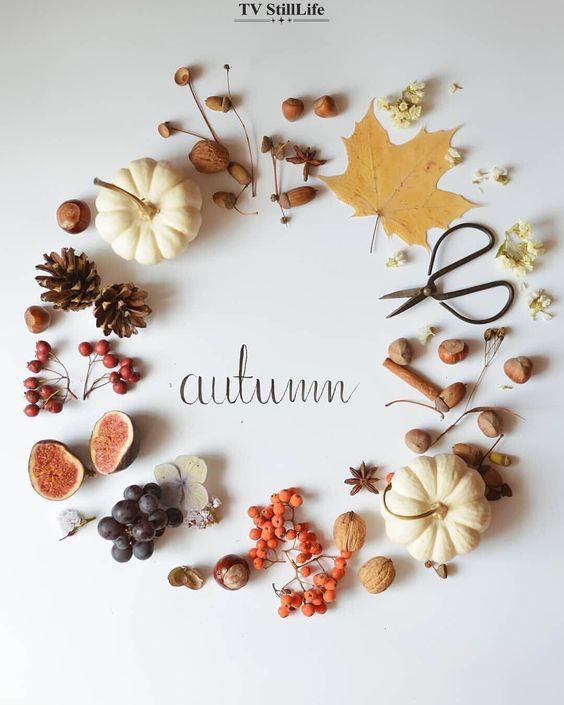 matrimonio autunnale ecco foglie frutti